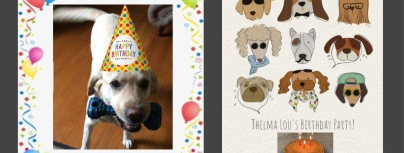 Thelma's 6th Birthday Party